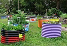 forster_community_garden