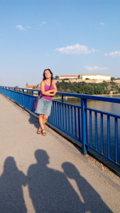 Мостът над Дунава на излизане от Нови Сад, а отзад е известната крепост