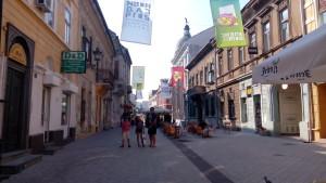 И малко туризъм – децата с Иво на една от улиците в Нови Сад, за която една от доброволките от лагера ни беше разказала, че е най-високата точка на града.